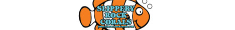Slipperyrockcorals